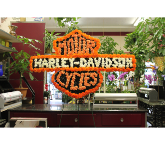 Harley in Yonkers NY, Hollywood Florist Inc