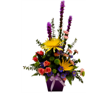 Purple Pleasure in Pinellas Park FL, Hayes Florist