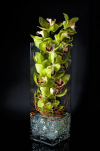 Orchid Tower in New York NY, Starbright Floral Design