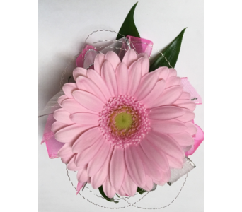 Perfectly Pink Miniature Gerbera Wrist Corsage in Wyoming MI, Wyoming Stuyvesant Floral
