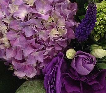 Amethyst-Florist Choice in Toronto ON, Bloominghill Flowers