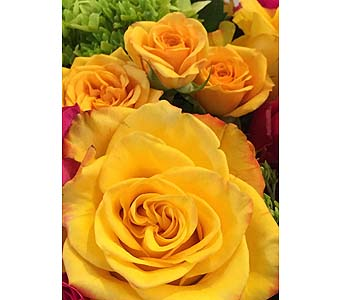 Citrine-Florist Choice in Toronto ON, Bloominghill Flowers