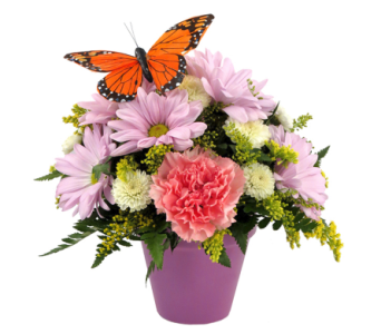 Spring Butterfly Bouquet in Southfield MI, Thrifty Florist