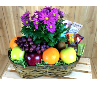 Healthy & Blooming in Baltimore MD, Raimondi's Flowers & Fruit Baskets