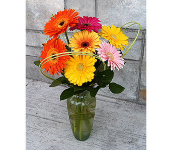 Happy Gerberas in Muskegon MI, Wasserman's Flower Shop