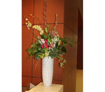 6 in Dallas TX, Petals & Stems Florist