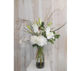 Blanco in Dallas TX, Petals & Stems Florist