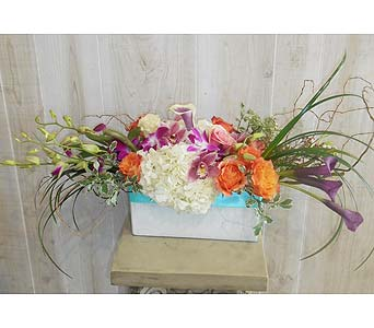 Chatter Box in Dallas TX, Petals & Stems Florist