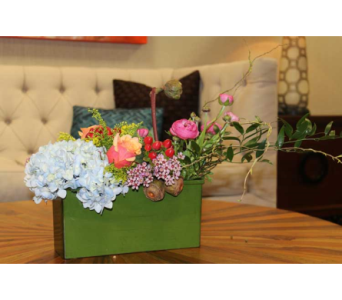 17 in Dallas TX, Petals & Stems Florist