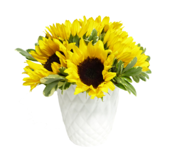Simply Sunflowers in Silver Spring MD, Bell Flowers, Inc