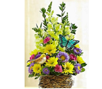 Bird's Nest Basket in Largo FL, Rose Garden Flowers & Gifts, Inc
