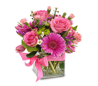 Pinky in Moline IL, K'nees Florists