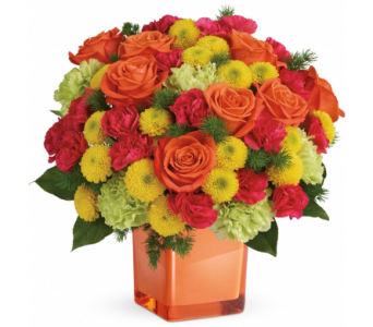 Citrus Smiles in Norristown PA, Plaza Flowers