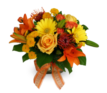 Bright Surprise in Indianapolis IN, McNamara Florist