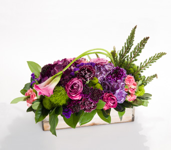 Box of Splendor in New York NY, Starbright Floral Design