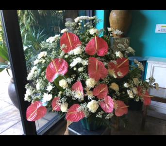 Sympathy Arrangement With Pink Anthurium In Honolulu HI, Stanley Ito Florist