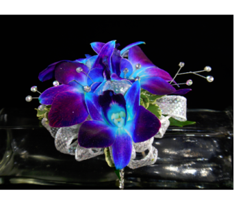 Blue Orchid Corsage in Greenville SC, Expressions Unlimited