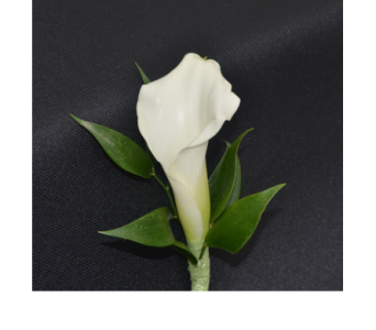 Calla Lily Boutonniere in Zeeland MI, Don's Flowers & Gifts