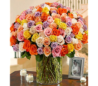 100 Premium Long Stem Multicolored Roses in a Vase in Mission Viejo CA, Conroy's Flowers
