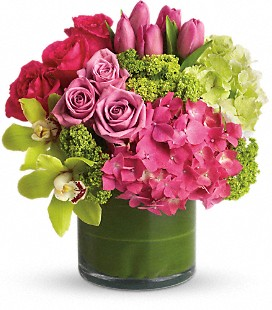 New Sensations in Clearwater FL, Hassell Florist