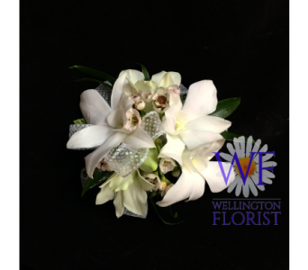 White orchids on white in Wellington FL, Wellington Florist
