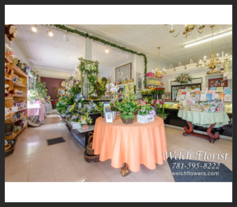 Welch Florist Spring Store Decor in Lynn MA, Welch Florist