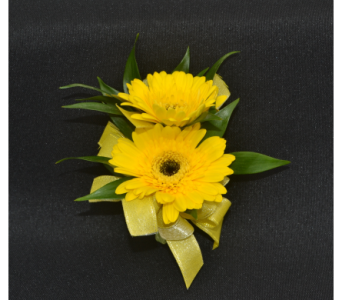 Mini Gerbera Daisy Corsage in Zeeland MI, Don's Flowers & Gifts