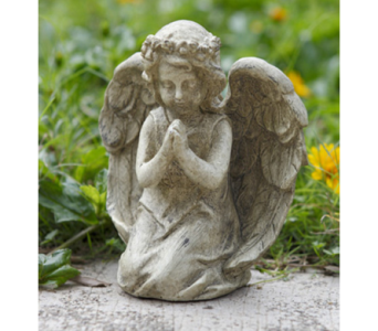 Small Praying Angel in Owensboro KY, Welborn's Floral Company