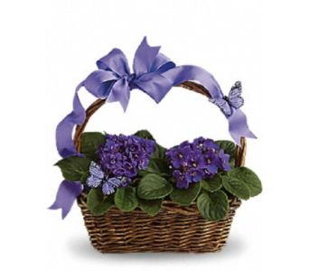 Purple Basket in Ft. Lauderdale FL, Jim Threlkel Florist