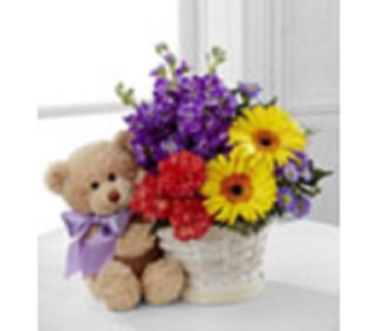 Bear & Basket in Ft. Lauderdale FL, Jim Threlkel Florist