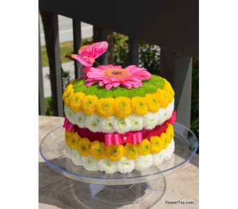 That's a Cake in Arizona, AZ, Fresh Bloomers Flowers & Gifts, Inc