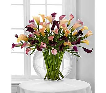 Flawless Luxury Calla Lily Bouquet - 45 Stems in Malverne NY, Malverne Floral Design