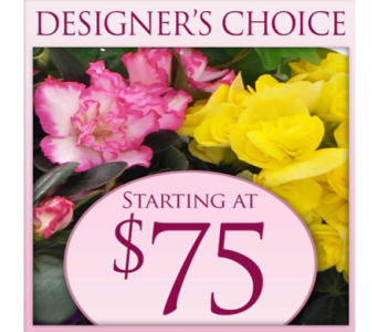 Blooming Gardens in Indianapolis IN, George Thomas Florist
