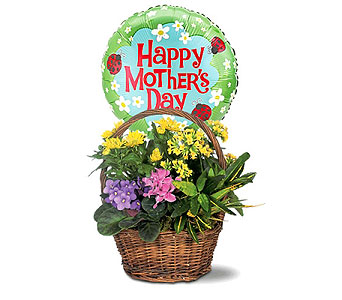 Petite European Basket with Mother's Day Balloon by 1-800-balloons
