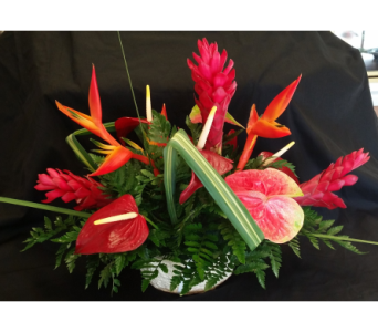MTF803 Tropical Low Arrangement in Mililani Town HI, Mililani Town Florist