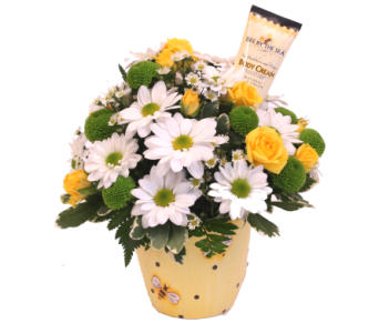 �BEE�CAUSE SHE DOES SO MUCH FOR YOU in Grimsby ON, Cole's Florist Inc.