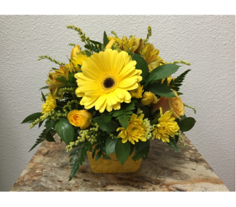 Sunglow in Arcata CA, Country Living Florist & Fine Gifts