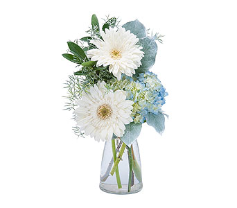 Blue Mist in Spartanburg SC, A-Arrangement Florist