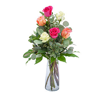 Six Roses in Poplar Bluff MO, Rob's Flowers & Gifts
