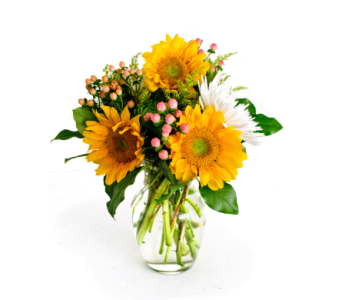 You are My Sunshine in Nashville TN, Emma's Flowers & Gifts, Inc.