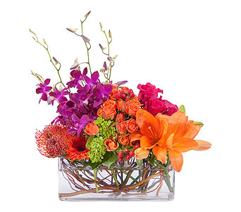 Powerfully Prismatic in Mount Morris MI, June's Floral Company & Fruit Bouquets