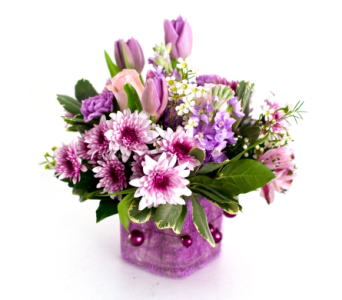 Pleasantly Plum in Nashville TN, Emma's Flowers & Gifts, Inc.