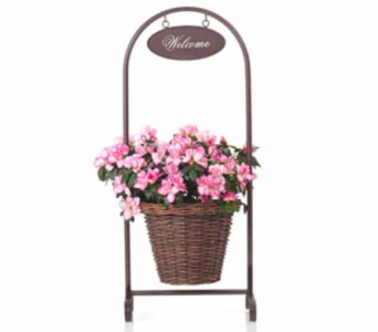 Azalea in Decorative Basket in Maple Valley WA, Maple Valley Buds and Blooms