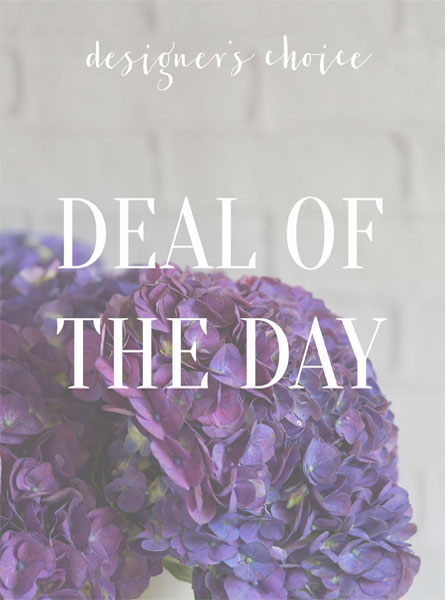 Deal of the Day in Raleigh NC, Johnson-Paschal Floral Company