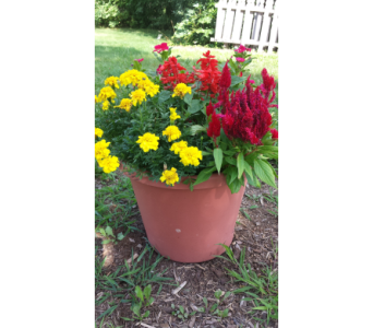 Deck Planter in Oconomowoc WI, Rhodee's Floral & Greenhouses