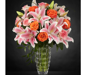 Sweetly Stunning in Lewisville TX, D.J. Flowers & Gifts