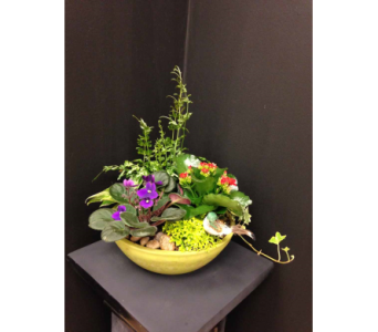 Planted Bowl in Georgetown ON, Vanderburgh Flowers, Ltd