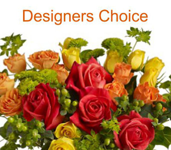 Designers Choice Arrangement in Aurora ON, Caruso & Company