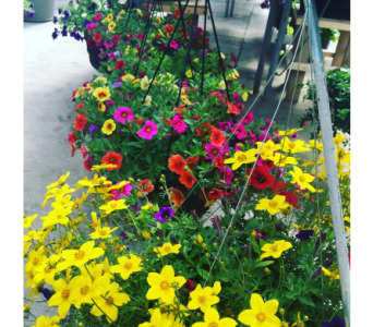 Hanging Garden Baskets in Burley ID, Mary Lou's Flower Cart