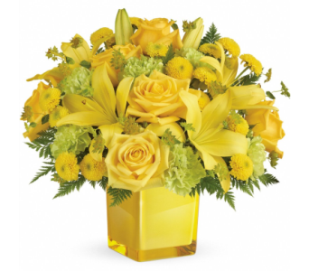 Sunny Mood Bouquet in Norristown PA, Plaza Flowers